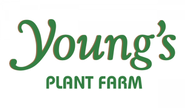 Young's Plant Farm logo