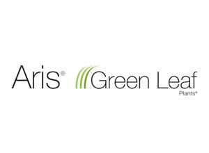 Aris Green Leaf