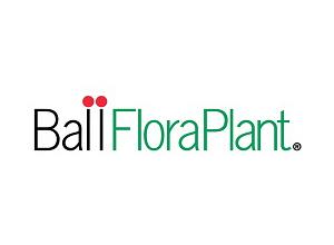 Ball Flora Plant